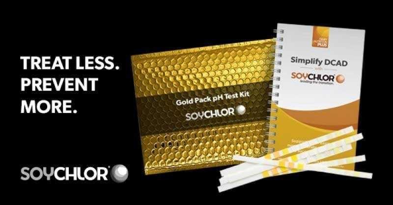 4899 DNP Gold Pack 600x314 2 Retargeting 180719 211032 mtime20180719141032