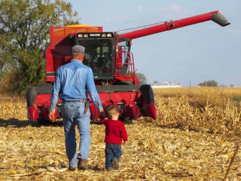 Farmer and a child walking toward a combine during harvest season
