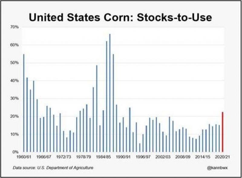 Corn Stocks