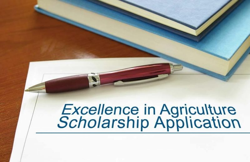 Excellence In Ag Scholarships