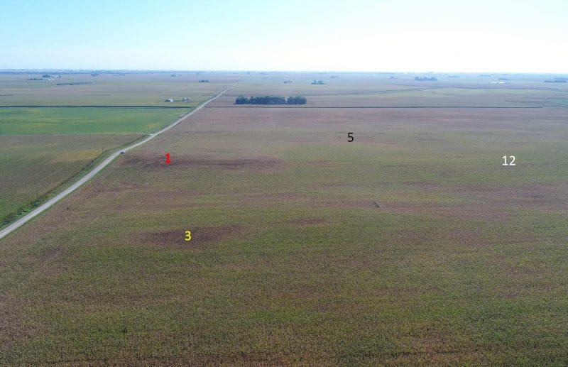 Drone image 1