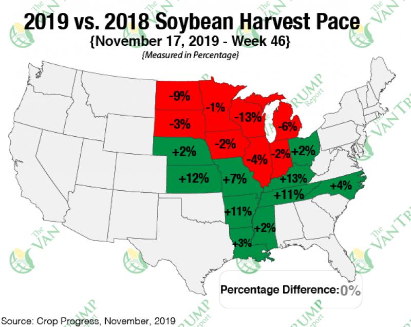 Grain comments harvest pace beans 112019