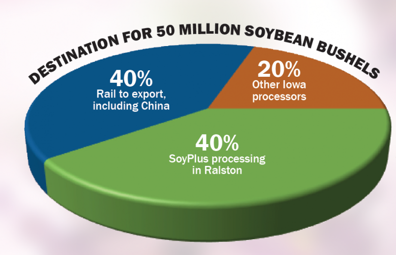 Soybean destination