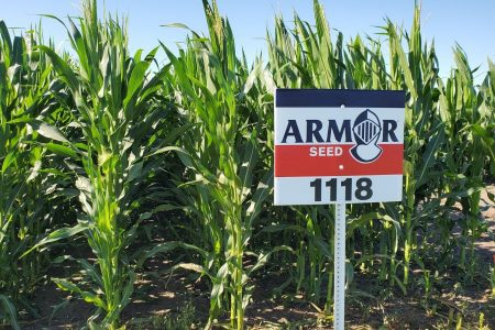 Armor Seed Plot Sign