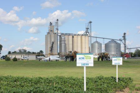 Bradford test plot with Acre Edge sign