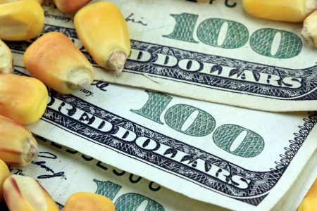 Corn into Cash Ag Nook money
