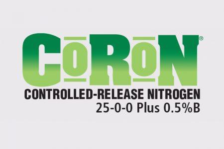 Coron