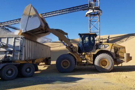 Equipment moving grain Landus Cooperative