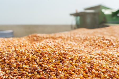 Grain Commentary Act On 041221 vf