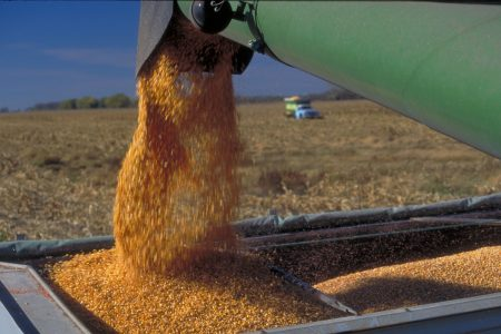 Grain Market Commentary Act On 031221 vf