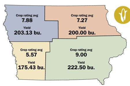 Grow on the Go Corn Crop Condition Just Map