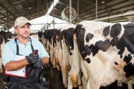 Meet Godfrey Dairy 1 mtime20180509115145