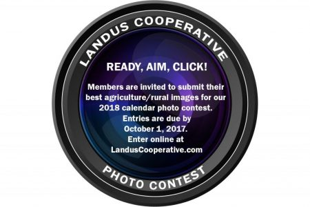 Photo Contest Lens With Words Vf 1024X819
