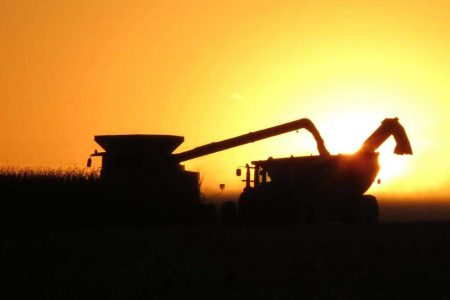Sillouette Harvest Sunset