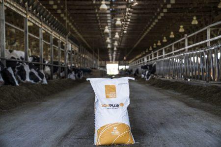 Soy Plus Bag on farm 1