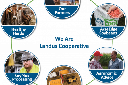 We Are Landus Cooperative 1024X969