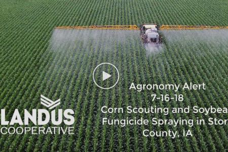 Agronomy Alert