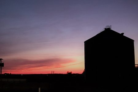 Bin sunset harvest