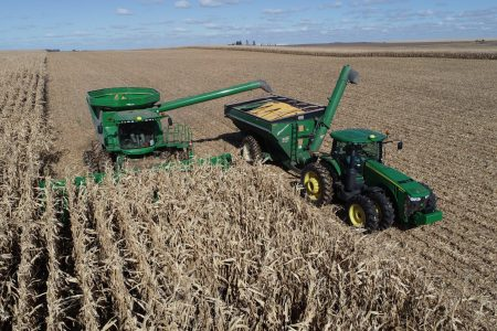 Bradford latimer plot harvest