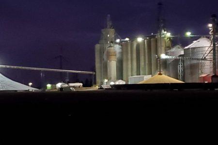 Bradford night time harvest
