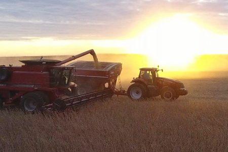 Grain Podcast