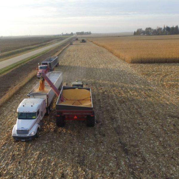 Harvest Homestretch