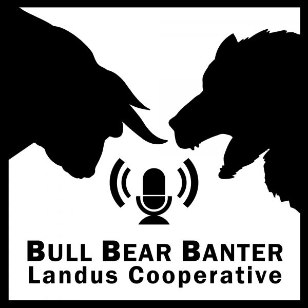 Podcast Bull Bear Bantor